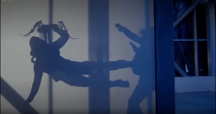 oliver silhouette fight
